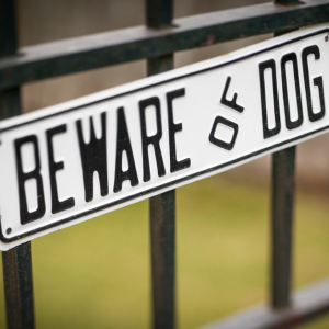 beware dog.png